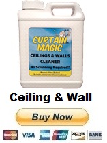 Ceiling Wall Mould Cleaner Australia